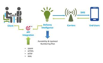 SMS Marketing Company - Bulk SMS Services - Bulk SMS Provider